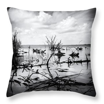 Contrast Throw Pillow by Alan Raasch
