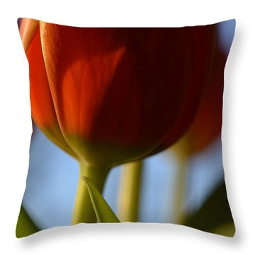 Contrast Throw Pillow by Corinne Rhode