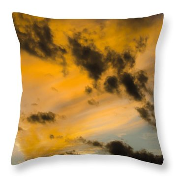 Throw Pillow featuring the photograph Contrasts by Wanda Krack
