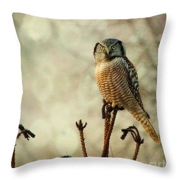 Convenient Perch Throw Pillow
