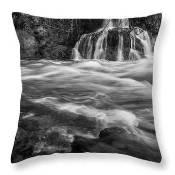 Convergence Bw Throw Pillow