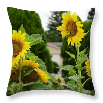 Conversing Sunflowers Throw Pillow