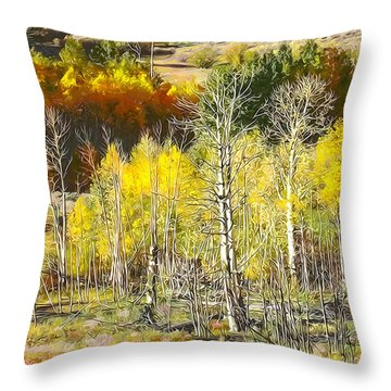 Conway Summit 3 Throw Pillow