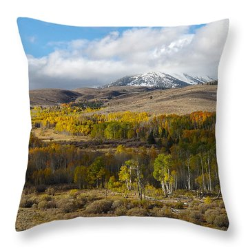 Conway Summit 4 Throw Pillow