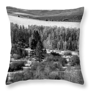 Conway Summit In Winter Throw Pillow by Jan Davies