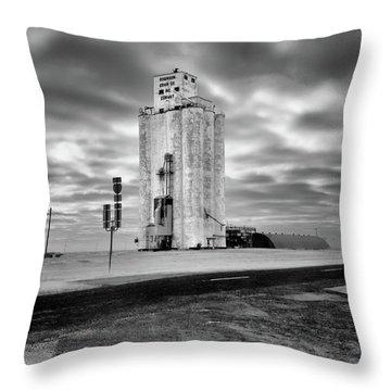 Conway Texas Throw Pillow