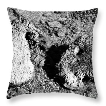 Throw Pillow featuring the photograph Cooing Rocks by Jez C Self