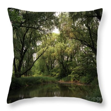 Cook County Forest Preserve No 6 Throw Pillow by Kathy McClure