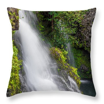 Cool Dip Throw Pillow
