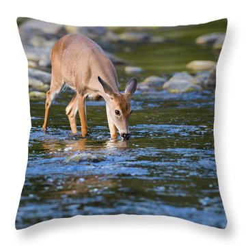 Cool Drink Throw Pillow