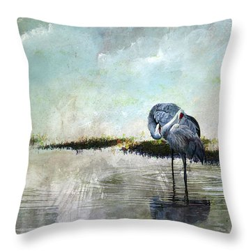 Cool Evening  Throw Pillow