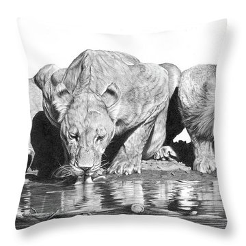 Cool For Cats Throw Pillow