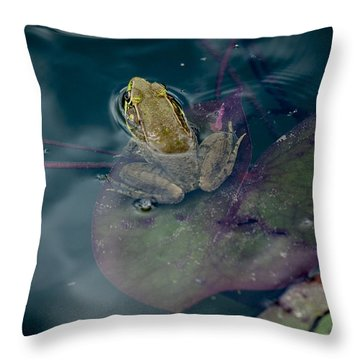 Cool Frog-hot Day Throw Pillow