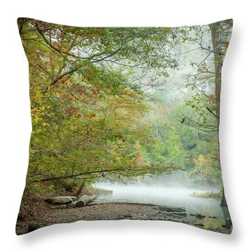 Throw Pillow featuring the photograph Cool Morning by Iris Greenwell