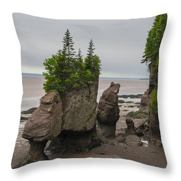 Cool Rocks Throw Pillow by Will Burlingham