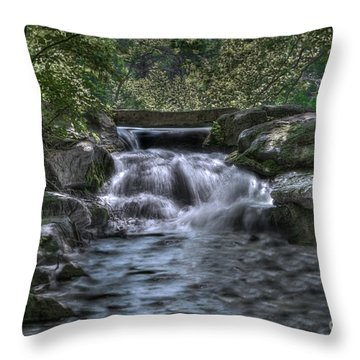 Throw Pillow featuring the photograph Cooling Waters  by Tamyra Ayles