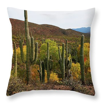 Coon Creek With Saguaros And Cottonwood, Ash, Sycamore Trees With Fall Colors Throw Pillow by Tom Janca