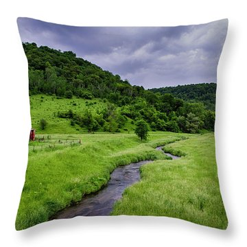 Coon Valley Throw Pillow