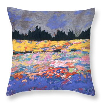 cooney sunset I Throw Pillow