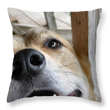 Coookiesss? Throw Pillow