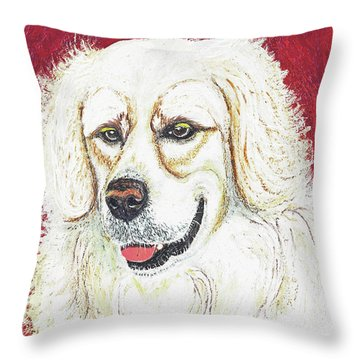 Throw Pillow featuring the painting Cooper II by Ania M Milo