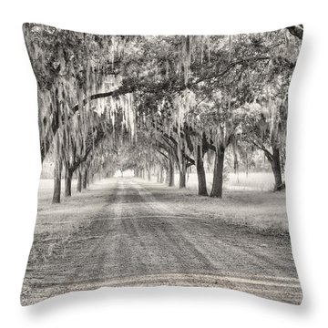 Coosaw Plantation Avenue Of Oaks Throw Pillow