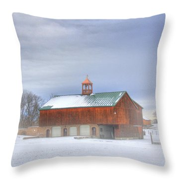 Copper Cupola Throw Pillow