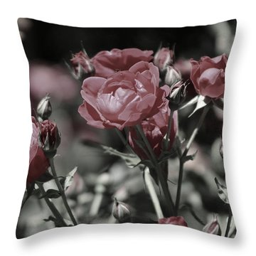 Copper Rouge Rose In Almost Black And White Throw Pillow