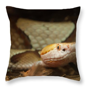 Throw Pillow featuring the digital art Copperhead by Chris Flees