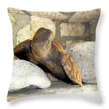 Throw Pillow featuring the photograph Coral And Turtle Decor by Francesca Mackenney