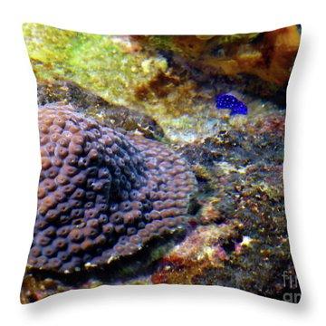 Throw Pillow featuring the digital art Coral Art Cu 3 by Francesca Mackenney