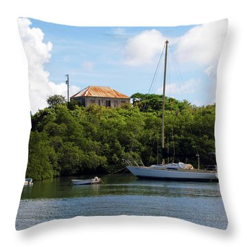 Coral Bay 1 Throw Pillow