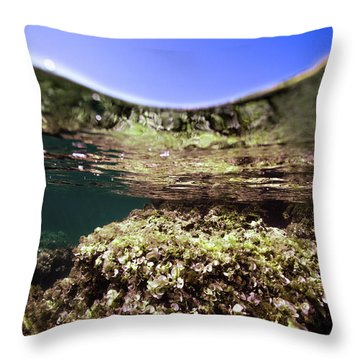 Coral Beauty Throw Pillow