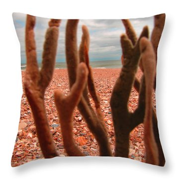 Throw Pillow featuring the photograph Coral Confusion by Laura Brightwood