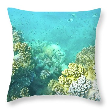 Throw Pillow featuring the photograph Coral by Debbie Cundy