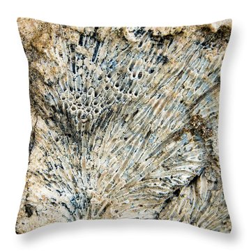 Throw Pillow featuring the photograph Coral Fossil by Jean Noren