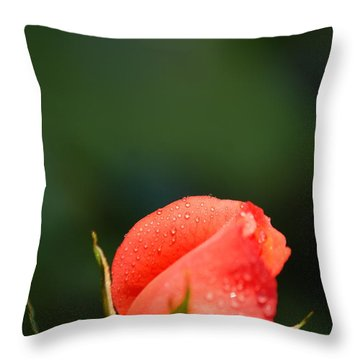 Coral Rose On Green Throw Pillow by Debbie Karnes