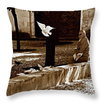 Cordoba Flight Throw Pillow by Lorraine Devon Wilke
