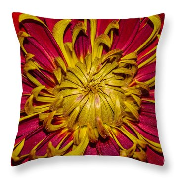 Core Of The Flower Throw Pillow