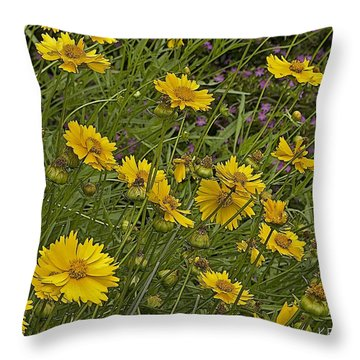 Coreopsis And Mexican Heather Throw Pillow