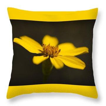 Coreopsis Verticillata Throw Pillow