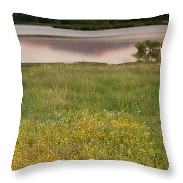 Corepsis Blooming At The Quanah Parker Lake Throw Pillow by Iris Greenwell