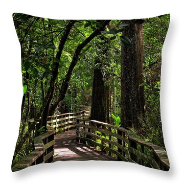 Corkscrew Swamp Throw Pillow