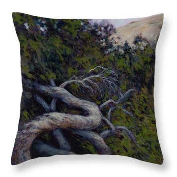 Corkscrewed Throw Pillow