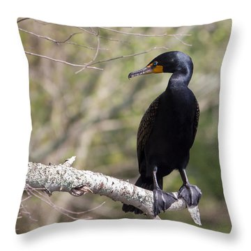 Cormorant Throw Pillow