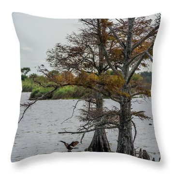 Throw Pillow featuring the photograph Cormorant by Paul Freidlund
