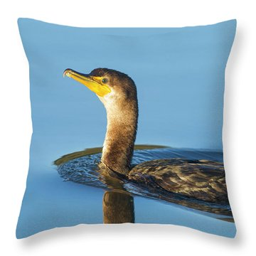 Cormorant Reflection Throw Pillow