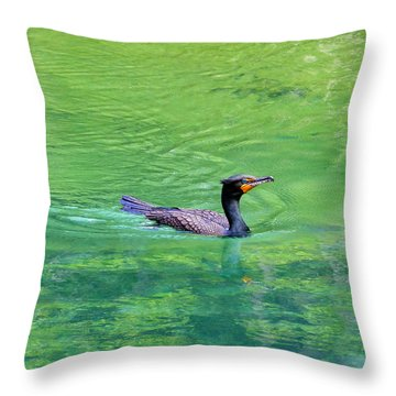 Cormorant Spring Throw Pillow by Judy Wanamaker