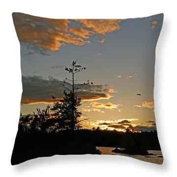 Throw Pillow featuring the photograph Cormorant Tree by Lynda Lehmann