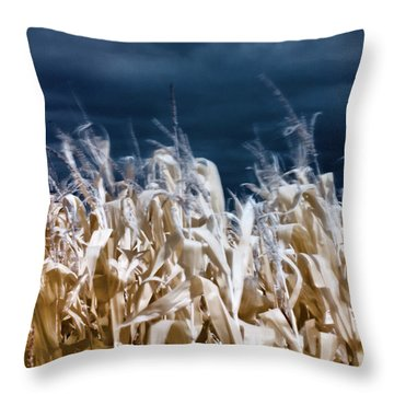Throw Pillow featuring the photograph Corn Field by Helga Novelli